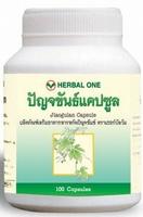 Jiaogulan (Gynostemma pentaphyllum) potentes Antioxidans  100 capsules