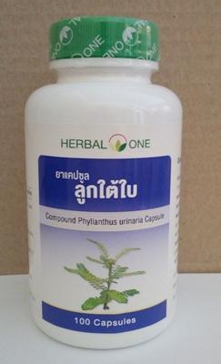 Compound Phyllanthus urinaria verjüngt die Leberfunktion  100 capsules