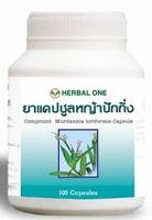 Murdannia loriformis (Beijing grama) alívio de eczema  100 capsules